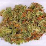 Buy Amnesia Haze strain | Buy weed online
