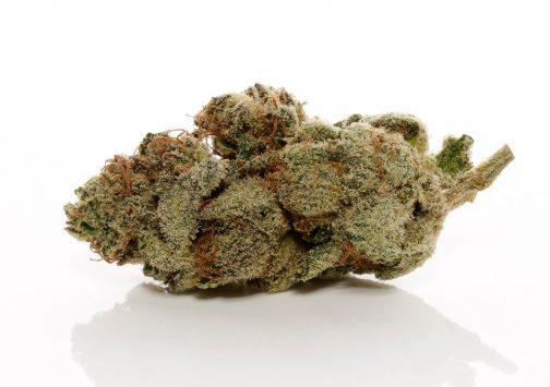 Bruce Banner # 3 strain | Buy Marijuana online | Buy Weed online