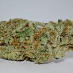 Buy Chocolope Strain | Buy marijuana online