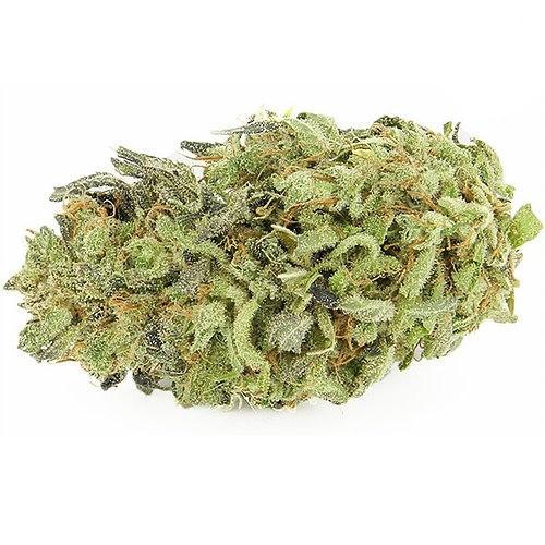 Buy Durban Poison marijuana strain | Buy weed online | Sativa