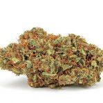 God's Gift Is an Indica Marijuana strain| Buy Marijuana Online | Buy Weed Online