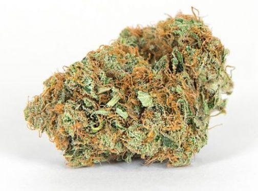 Golden Goat marijauna | Buy Marijuana Online | Buy Weed Online