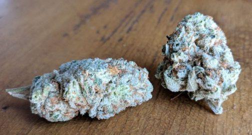 Gorilla Glue #4 | Buy Marijuana Online | Buy Weed Online
