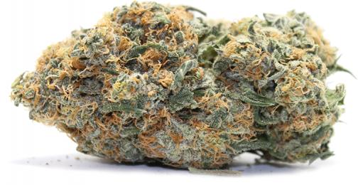 Kosher Kush Is an Indica marijuana strain | Buy Marijuana Online | Buy Weed Online