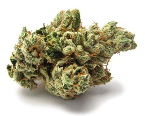 Buy SFV OG Kush online   An indica strain, Buy Marijuana Online