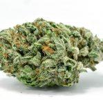 Buy Skywalker marijuana strain online | Buy Weed online | Indica