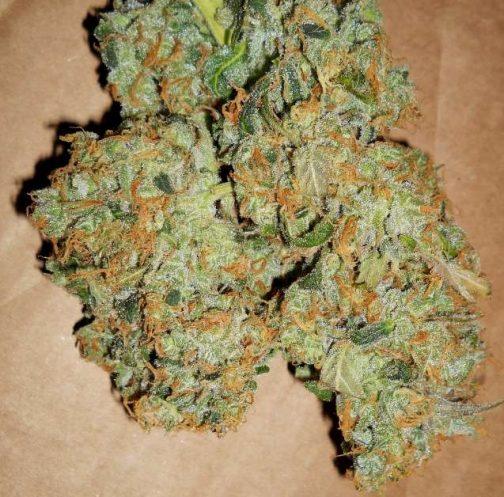 Island Sweet Skunk | Buy Marijuana online | Buy Weed online