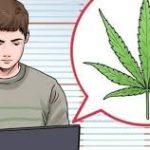 Buy Medical Marijuana Online, cannabis strains