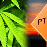 MedicalMarijuanaforPTSD?